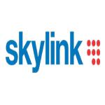 logo_skylink